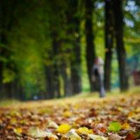 Осень :: Zak Doguzov