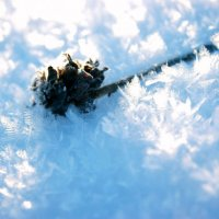 Классный снег :: Маргарита Красовская