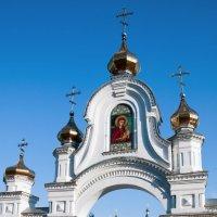 Молченский женский монастырь :: Дмитрий Грибанов
