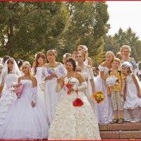 Парад невест :: Александр Ширяев