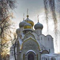 Вид на часовню Прохоровых и Смоленский собор :: Олег Калуцков