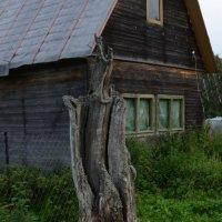 Природа :: Гоша Казачков