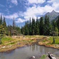 Шумакские минеральные грязи :: Виктор Никитин