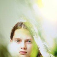 Катюша-03 :: Vladimir Sumovsky