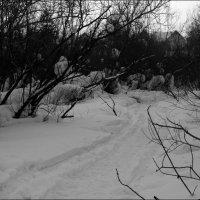 Дорога в логу 09.02.13 :: jynjy dfoty
