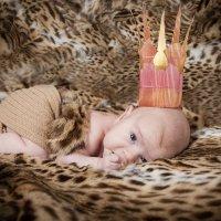 Детские фотосессии :: Екатерина Шипилова
