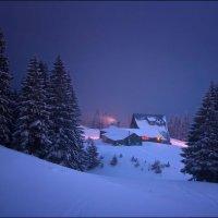 Туманная ночь :: Елена Кошель