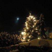 Рождество :: Наталья Сергеева