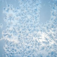 Замерзшее дыхание 4 :: Никита Григорьев