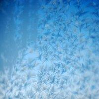 Замерзшее дыхание 2 :: Никита Григорьев