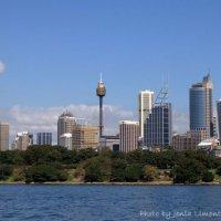 Вид на деловую часть города Сидней :: Евгений Лимонтов