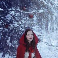 Красная Шапочка :: Sergey Gadenov