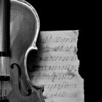 Из жизни скрипки :: Юлия Fa