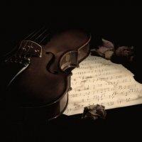 Из жизни скрипки 2 :: Юлия Fa