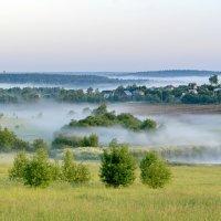 Туманное утро :: Александр Сивкин