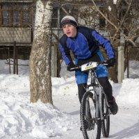 Зима не помеха :: Василий Гущин