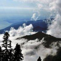 облака уползают в небо :: Дмитрий Грибанов