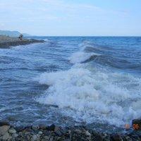 черное море :: Надежда Пономарева (Молчанова)