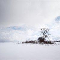 Одиночество :: Михаил Дрейке