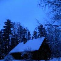 У леса на опушке...... :: Lina Liber