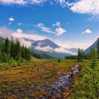 Болотинка в горной долине :: Виктор Никитин