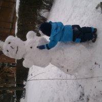 zima snegavik :: жанара zhanara