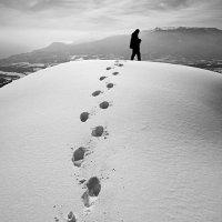 следы на снегу :: Юрий Данилевский
