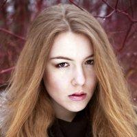 Юлия :: Ольга Вандермильц