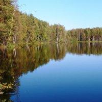 озерное зеркало.. :: Марина Харченкова