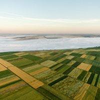 Туман и огороды :: Олег Склярук
