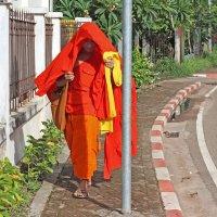 Лаос. Вьентьян. Когда очень жарко, а монастырь далеко :: Владимир Шибинский