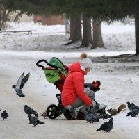 В парке ЦПКиО. г.Екатеринбург. :: Пётр Сесекин