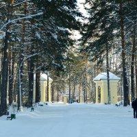 в городском парке :: Евгения Семененко