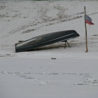 зимняя спячка :: Владимир Суязов