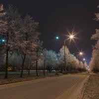 Дорога в зиму :: Сергей Канашин