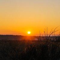 Ноябрьский закат :: Алёнка Шапран