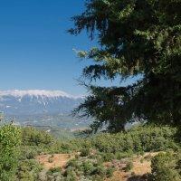 А горы так манят .... :: Сергей Человский