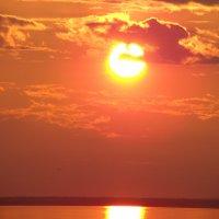 Солнечный знак :: Александр Велигура