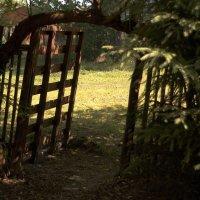 А ворота... :: kolyeretka