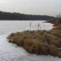 IMG_6350 - К зиме готовы! :: Андрей Лукьянов
