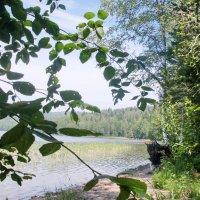 озеро :: Миляна Рождественская