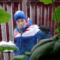 За окном зима... :: Тамара (st.tamara)