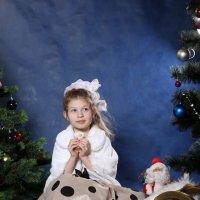 Новогодняя Сказка... :: Детский и семейный фотограф Владимир Кот