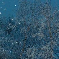 Из нашего окна :: Сергей Бойко