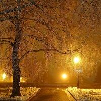 Золотой дождь :: Виктор Четошников