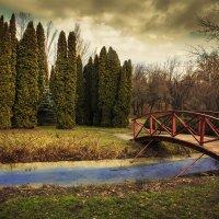 В парке :: Александр Пугач