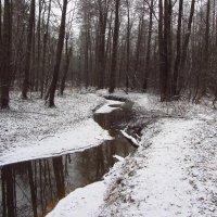 IMG_6501 - Для первого дня зимы -  неплохо! :: Андрей Лукьянов