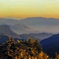 закаты Калифорнии :: viton