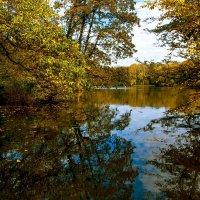 осеннее озеро :: Alexander Andronik