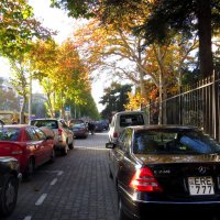 Осень в городе :: Наталья Джикидзе (Берёзина)